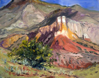 PAINTED DESERT GHOST RANCH