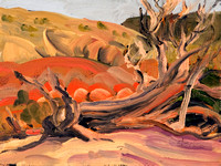 PAINTED DESERT GHOST RANCH HILLSIDE AND TREE