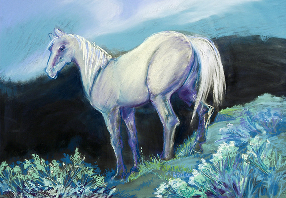BLUE HORSE ON THE MESA
