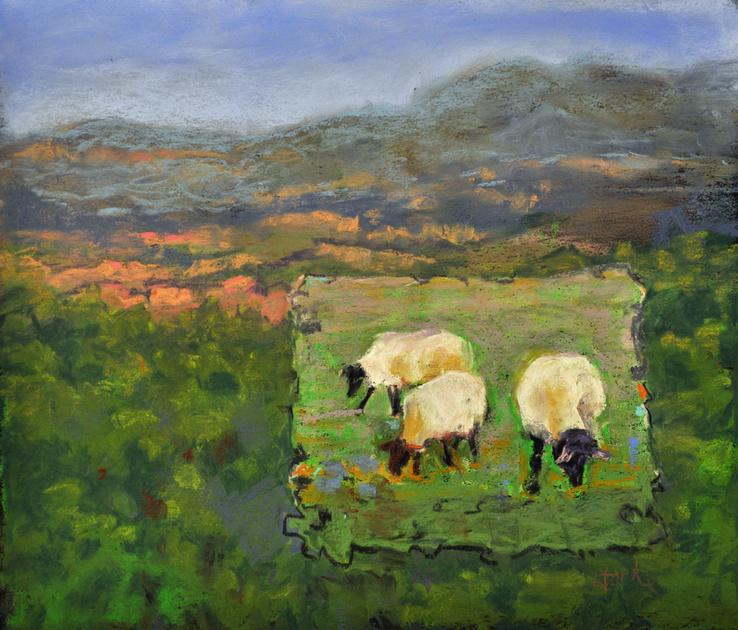 SHEEP IN UTAH