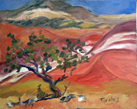 PAINTED DESERT WITH JUNIPER